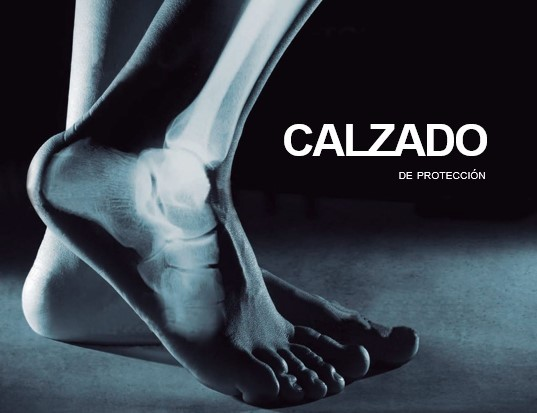 Calzado